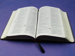 Gute Gründe für Vertrauen in die Bibel